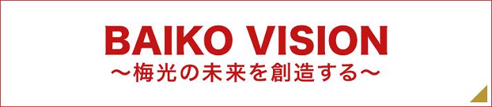 Baiko Vision
