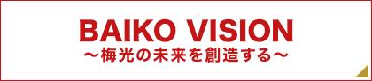 梅光vision