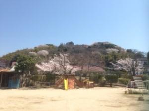 幼稚園(春)